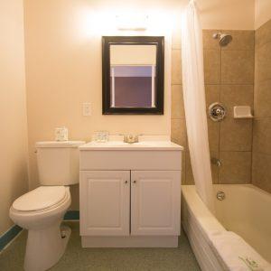 Interior Bathroom 1